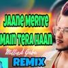 Jaane Meriye Main Tera haan Minal Gaba REMIX song