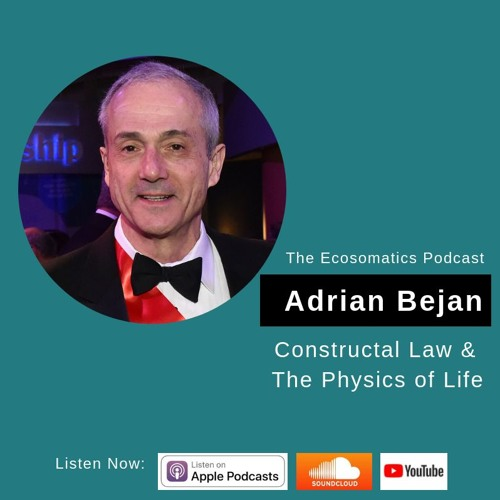 Constructal Law & The Physics of Life with Professor Adrian