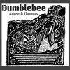 Ameeth Thomas - Bumblebee