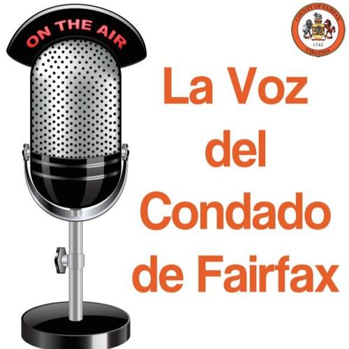 La Voz del Condado de Fairfax ~ John Marshall Library (Nov. 27, 2018)