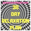 DAY 29 - 30 day Relaxation Plan Hypnosis Course - Jason Newland - MP3 Downloads