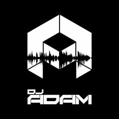 V'ghn - Trouble In The Morning (DJ ADAM 2MV Intro)