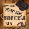 A Taste Of Country Music Vol 2