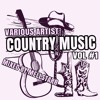A Taste Of Country Music Vol 1