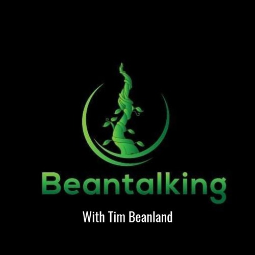 Beantalking Episode 3 Todd Frazier How to write a book that sells well in 39 Days