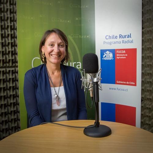 Chile Rural: Entrevista a Dominique Chauveau, jefa Unidad de Desarrollo Estratégico FIA