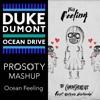 Ocean Feeling (Duke Dumont vs. The Chainsmokers & Kelsea Ballerini) Prosoty Mashup