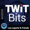 Alexa-enabled Big Mouth Billy Bass | TWiT Bits