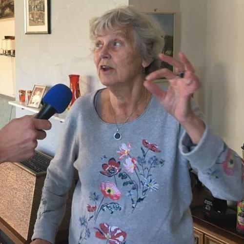 Annie Peek - een leven op de Abestederdijk