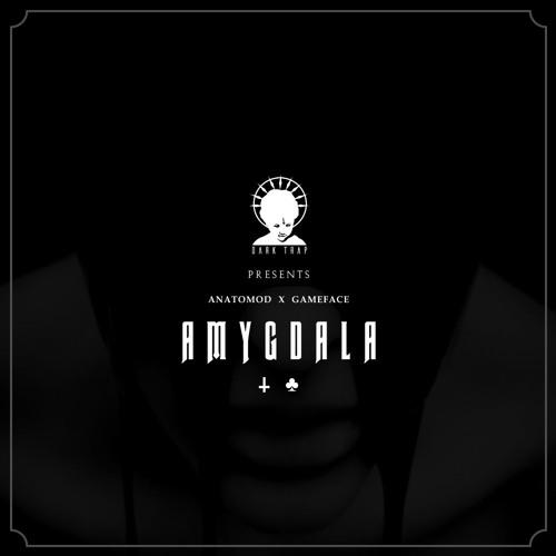 ANATOMOD x GAMEFACE - AMYGDALA