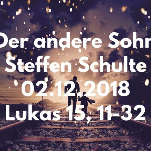 20181202 Der andere Sohn - Steffen Schulte
