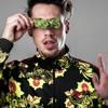 Download GReeeN - Süßes Cannabis Remix [Musikvideo] (prod. Slick).mp3 Mp3