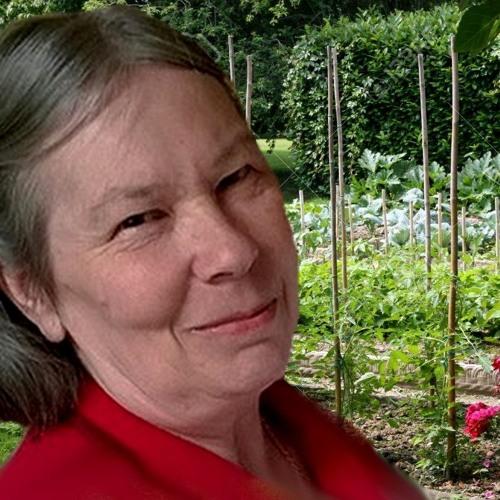 Agnes Millet 2 déc   Les semences chaudes