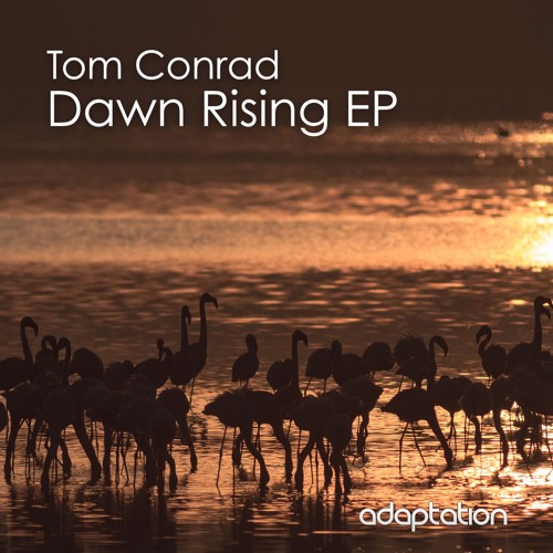 Tom Conrad - Dawn Rising EP