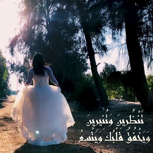 Hany Fakhry - Ya Nour Shaabak | هاني فخري - يا نور شعبك