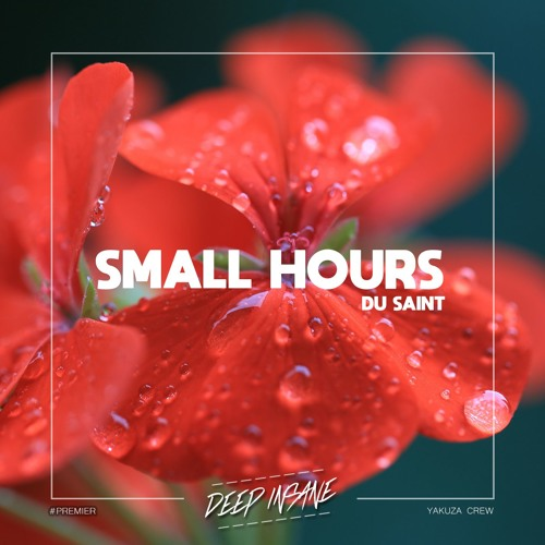 Du Saint - Small Hours [FREE DOWNLOAD]