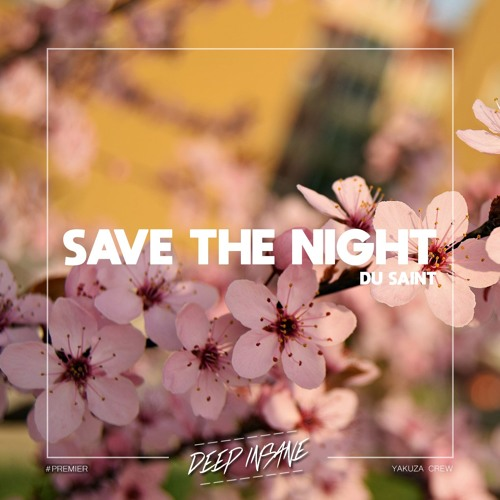 Du Saint - Save The Night [FREE DOWNLOAD]