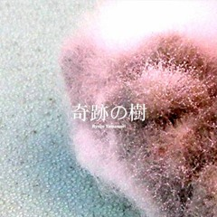 Ryogo Yamamori - Sansevieria(Emika Elena Remix)