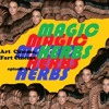 "Episode 16 - ""Magic Herbs"" [Herbie: Fully Loaded]"