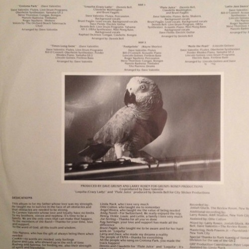 Dave Valentin - Crotona Park (Hober Mallow Tribute To The Parrot Dub Mix)