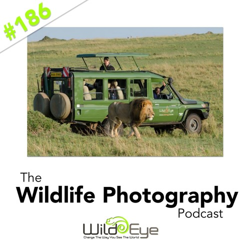 Episode 186 - Safari Or Photo Safari.  Which one is for you?