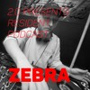 Download 2.0 Resident Podcast: Zebra Mp3