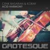 Cenk Basaran & KoRay - Acid Harmony TEASER