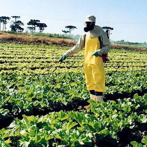 Política Nacional de Redução de Agrotóxicos é aprovada em comissão especial na Câmara