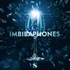 Arkadiusz Reikowski - Deep Down (Naked) - Soundiron Imbibaphones