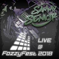 Sammy Senior - Live @ FozzyFest 2018