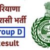 Haryana Group D Result 2018