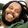 Letra Traduzida # 30 - True to myself de Ziggy Marley - por Diego Garcia