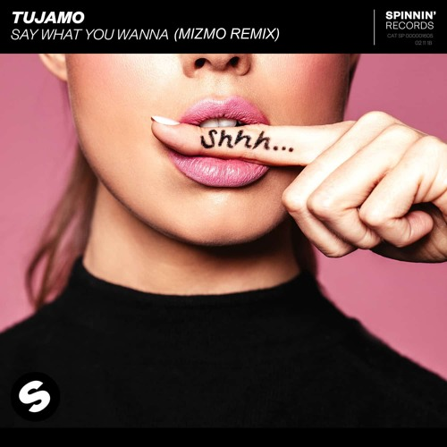 Tujamo - Say What You Wanna   Remix Contest   Spinnin' Records