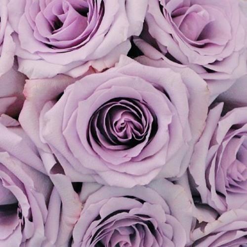 Seafoam and Roses