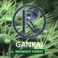 GANKAi - Midnight Forest