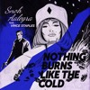 Snoh Aalegra - Nothing Burns Like The Cold (Hizuru 2step Remix)