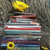 Sunflower Sutras - Interview with Izzy Wasserstein