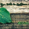 Ege - Delice Bir Sevda 90s (E.G. Mix )