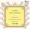 Cello Concerto in B Minor, Op. 104: I. Allegro