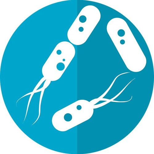 Wie Biotechnologen Bakterien verändern