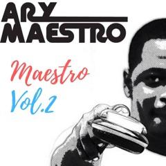 Maestro Vol.2 - House Music