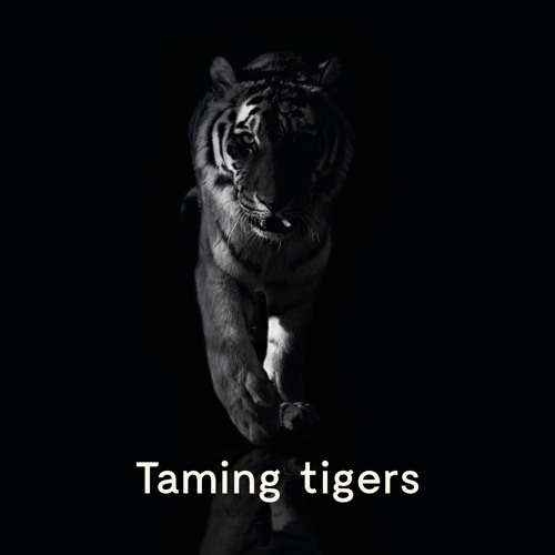 #2 WTF - Taming Tigers Podcast