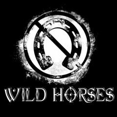 Harry Blotter - Psytrance & Forest Session @ Wild Horses Festival DEC 2018