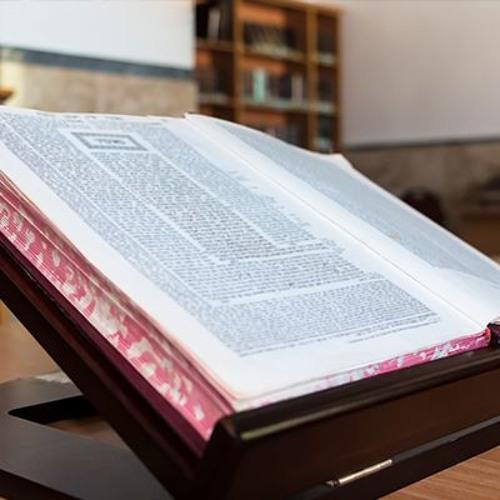 Chaim Saiman on the Rabbinic Idea of Law - Chapter 1