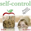 Self - Control Part 02 - Fruit of the Spirit