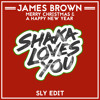 James Brown - Merry Christmas & A Happy New Year (SLY Edit)