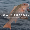 HOW 2 TUESDAY #22 - How To Cook Snapper On A Half Shell