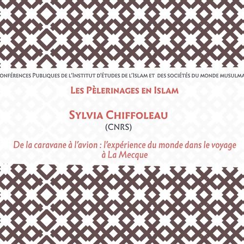 De la caravane à l'avion : l'expérience du monde dans le voyage à La Mecque / S. CHIFFOLEAU