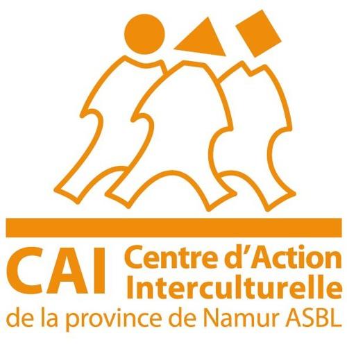 Migrants en transit en province de Namur et solidarité citoyenne - C.A.I.