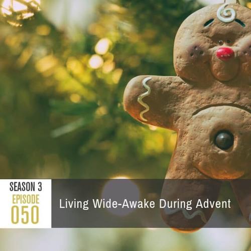 Season 3, Episode 50: Living Wide-Awake During Advent
